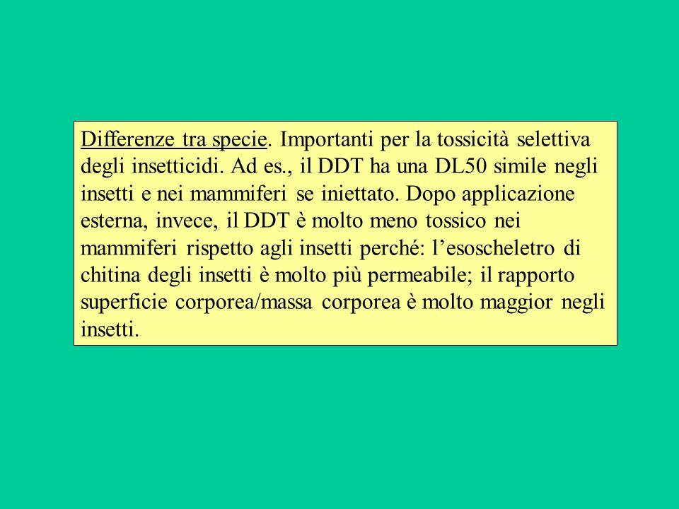 Differenze tra specie. Importanti per la tossicità selettiva degli insetticidi.