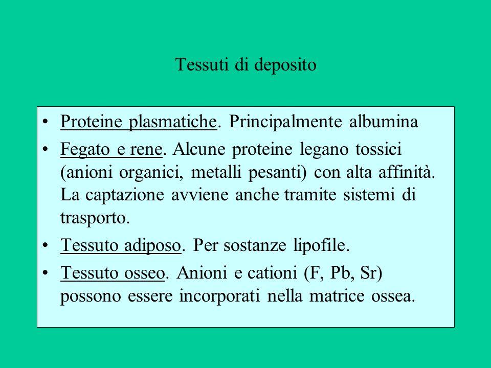 Tessuti di deposito Proteine plasmatiche. Principalmente albumina.