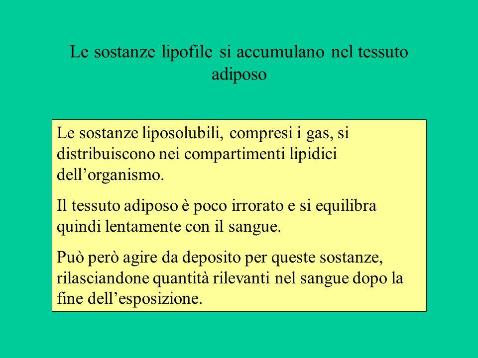 Le sostanze lipofile si accumulano nel tessuto adiposo