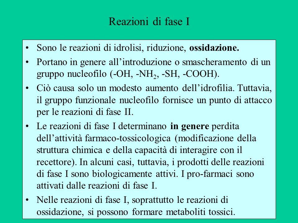 Reazioni di fase I Sono le reazioni di idrolisi, riduzione, ossidazione.