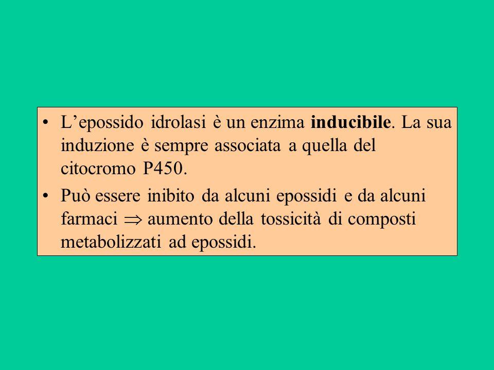 L'epossido idrolasi è un enzima inducibile