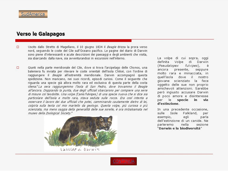 Verso le Galapagos SudAmerica CONTINUA