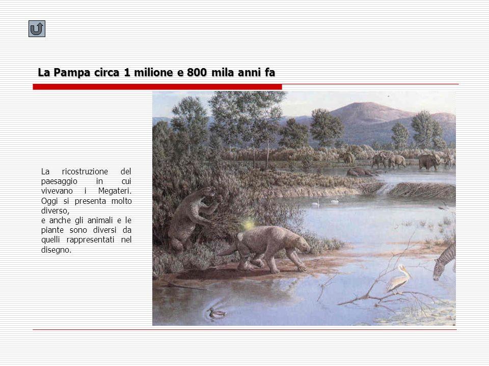 La Pampa circa 1 milione e 800 mila anni fa