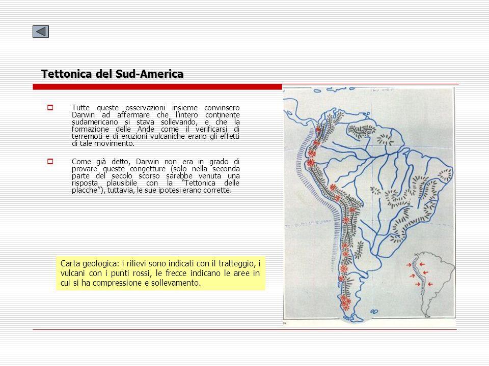 Tettonica del Sud-America