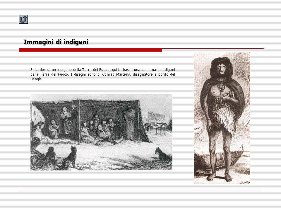 Immagini di indigeni