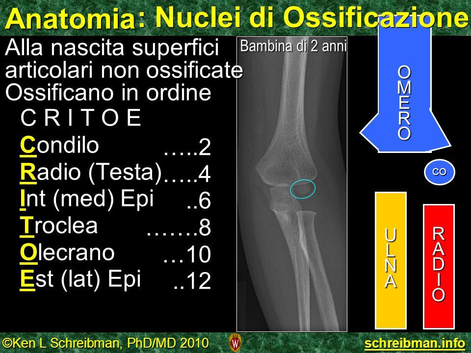 : Nuclei di Ossificazione