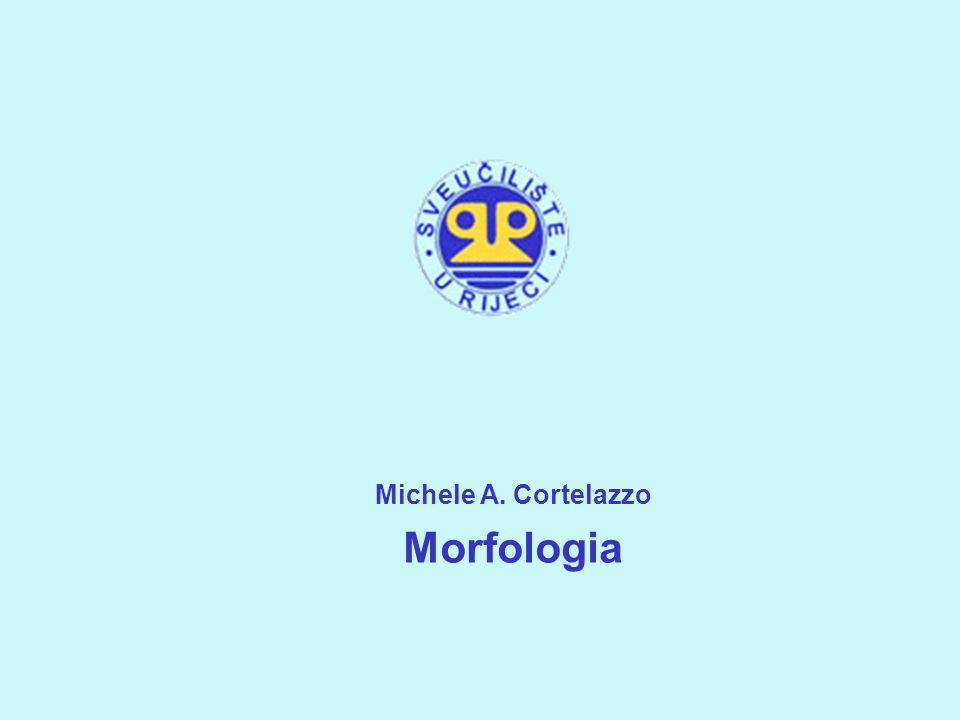 Michele A. Cortelazzo Morfologia 1