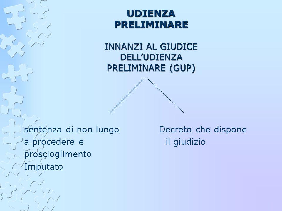 INNANZI AL GIUDICE DELL'UDIENZA PRELIMINARE (GUP)