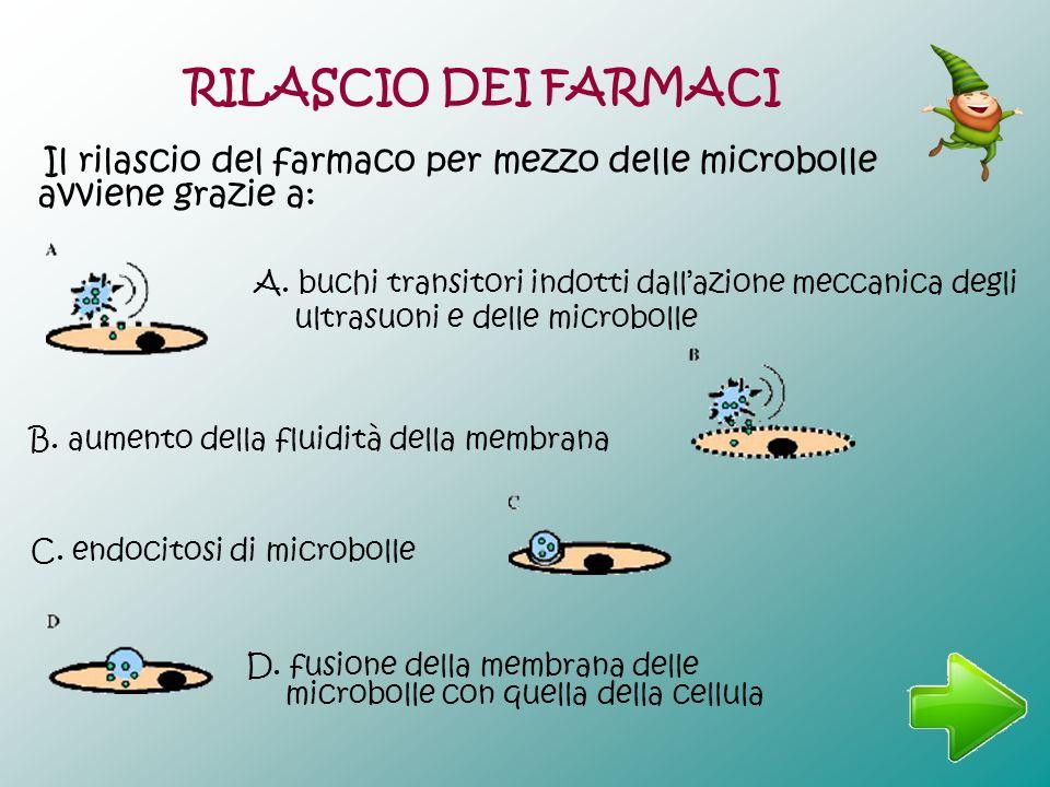 C. endocitosi di microbolle