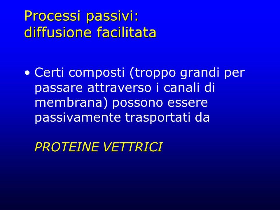 Processi passivi: diffusione facilitata