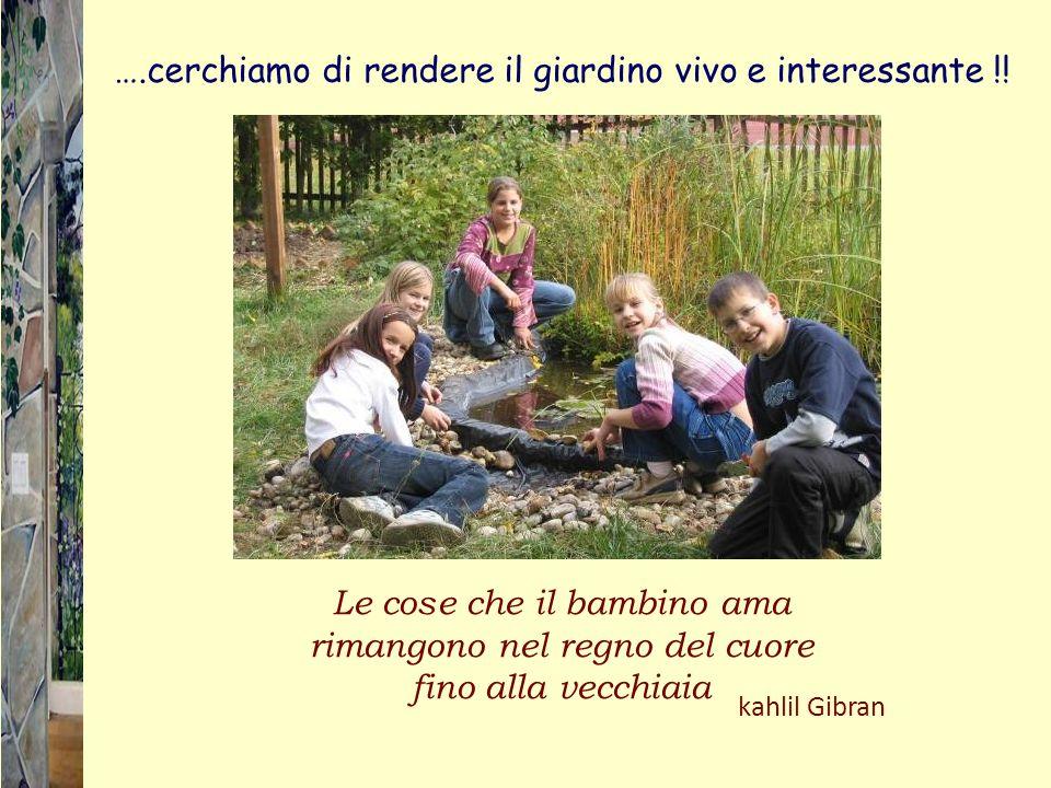 ….cerchiamo di rendere il giardino vivo e interessante !!