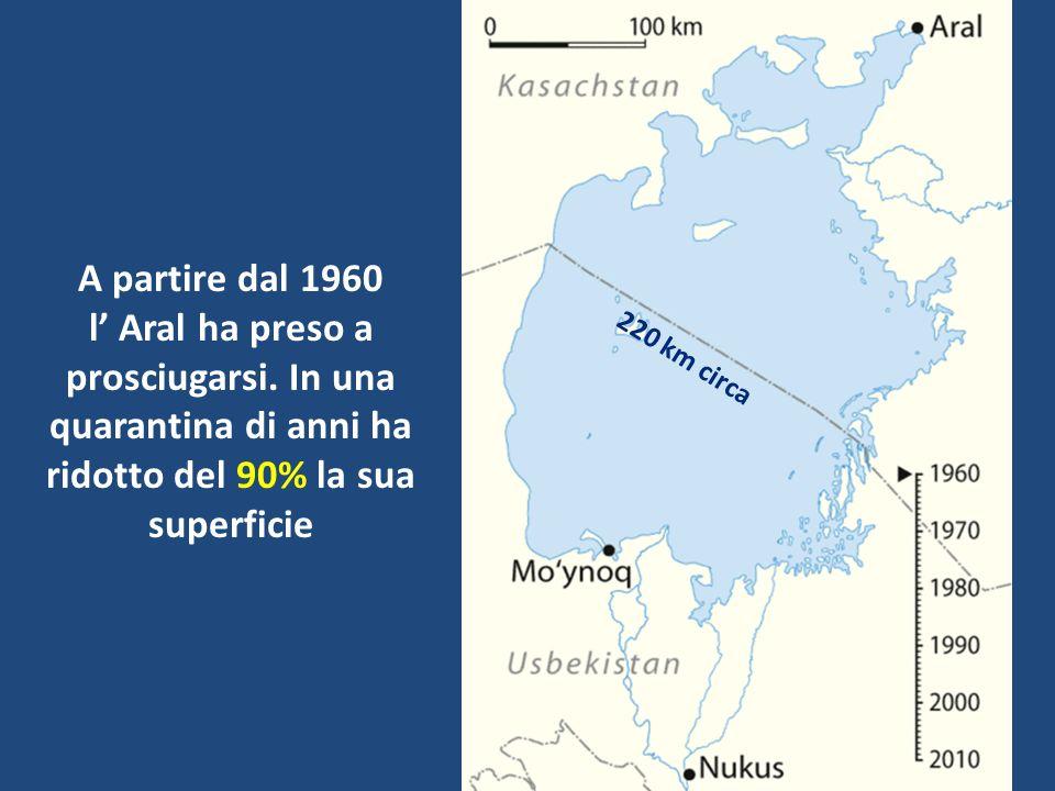 A partire dal 1960 l' Aral ha preso a prosciugarsi