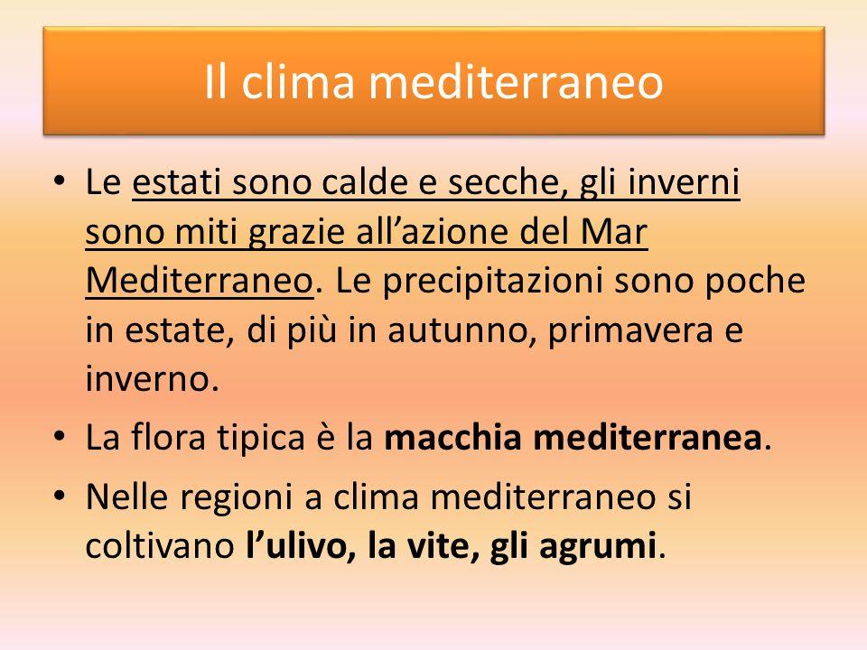 Il clima mediterraneo