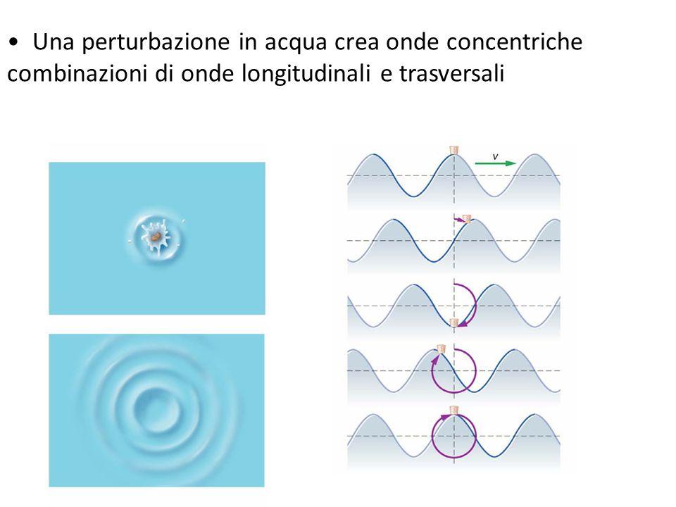 • Una perturbazione in acqua crea onde concentriche
