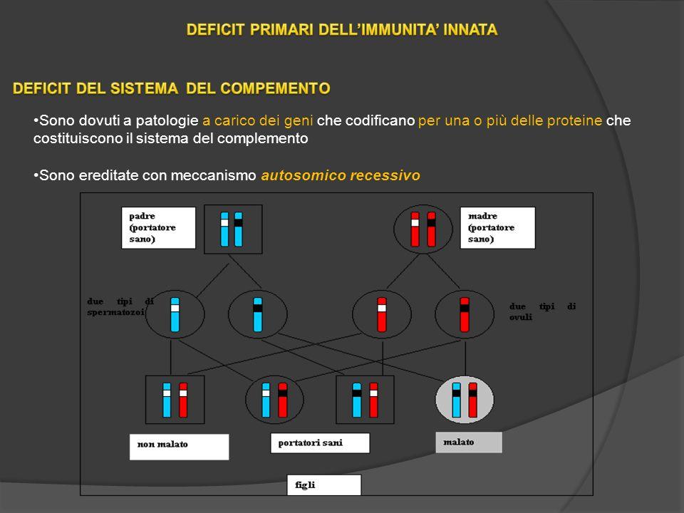 DEFICIT PRIMARI DELL'IMMUNITA' INNATA