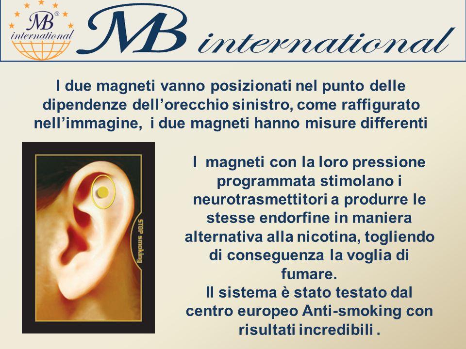 I due magneti vanno posizionati nel punto delle dipendenze dell'orecchio sinistro, come raffigurato nell'immagine, i due magneti hanno misure differenti