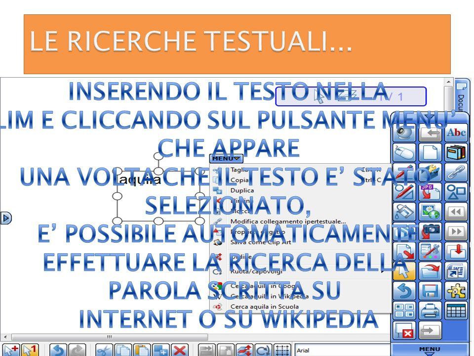 LE RICERCHE TESTUALI... INSERENDO IL TESTO NELLA