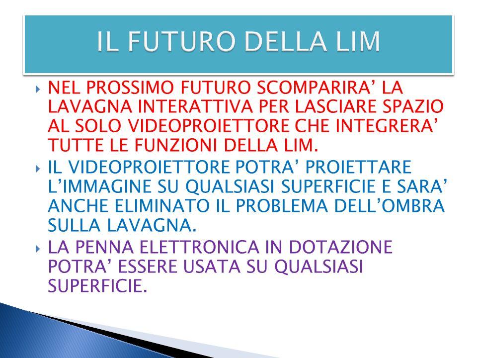 IL FUTURO DELLA LIM