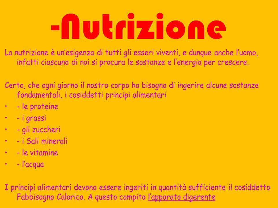 -Nutrizione