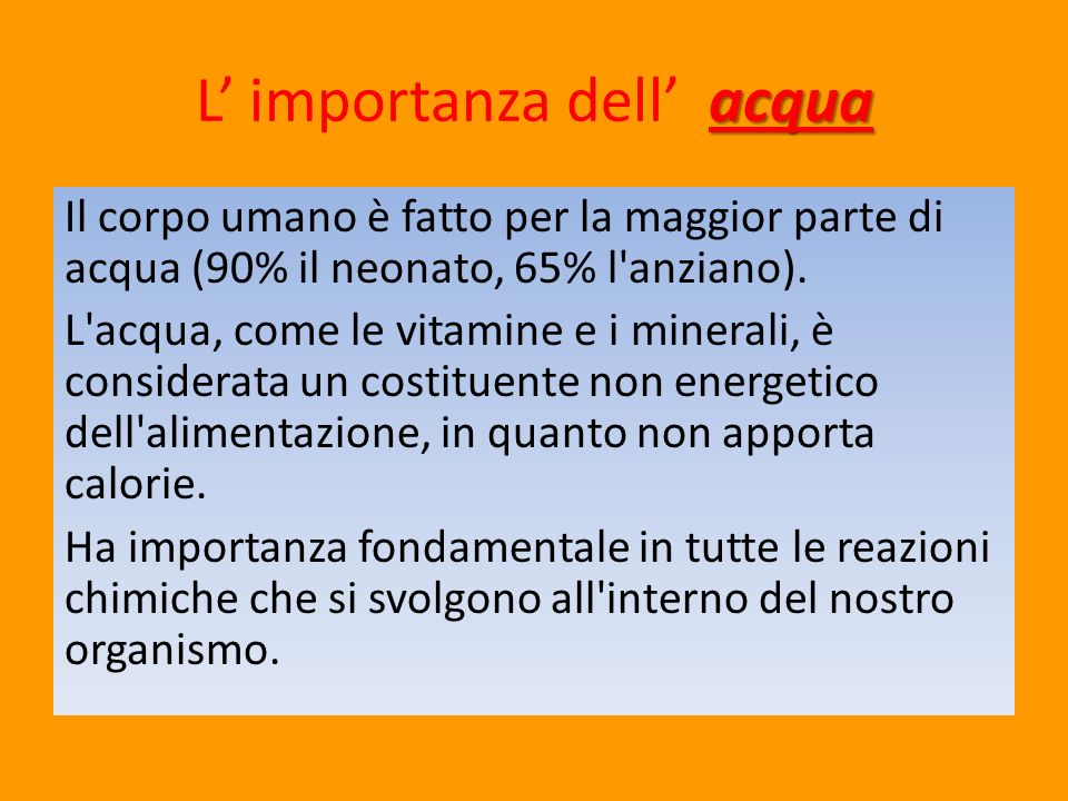 L' importanza dell' acqua