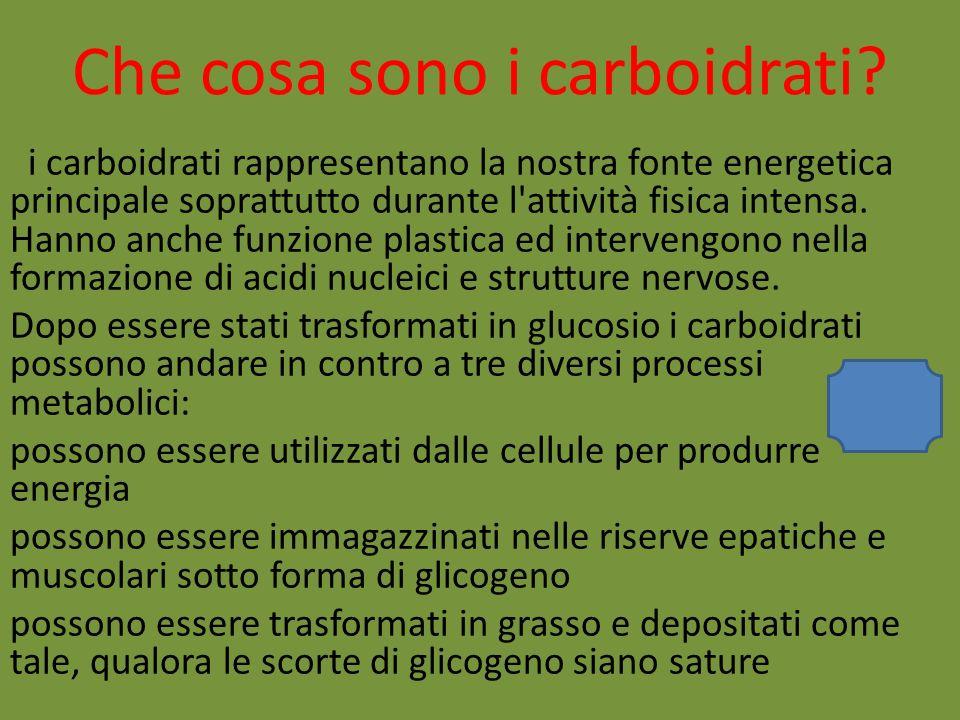 Che cosa sono i carboidrati