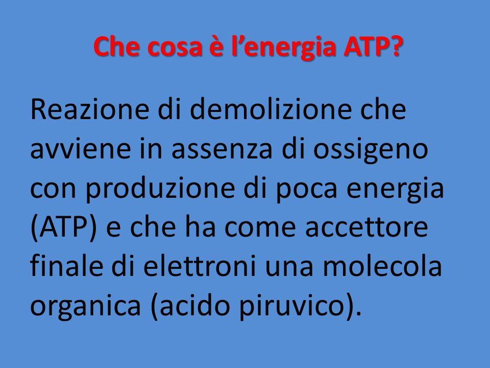 Che cosa è l'energia ATP