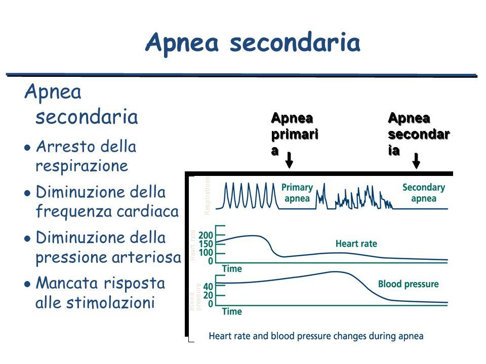 Apnea secondaria Apnea secondaria Arresto della respirazione