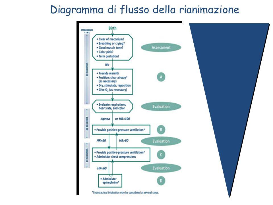 Diagramma di flusso della rianimazione