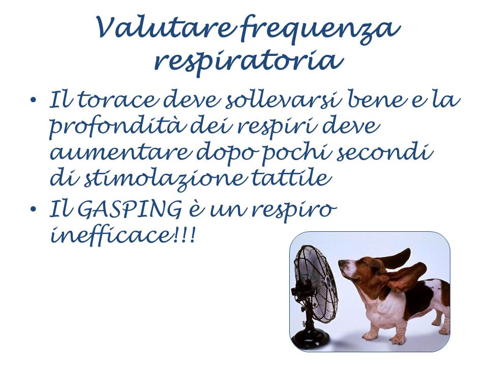 Valutare frequenza respiratoria