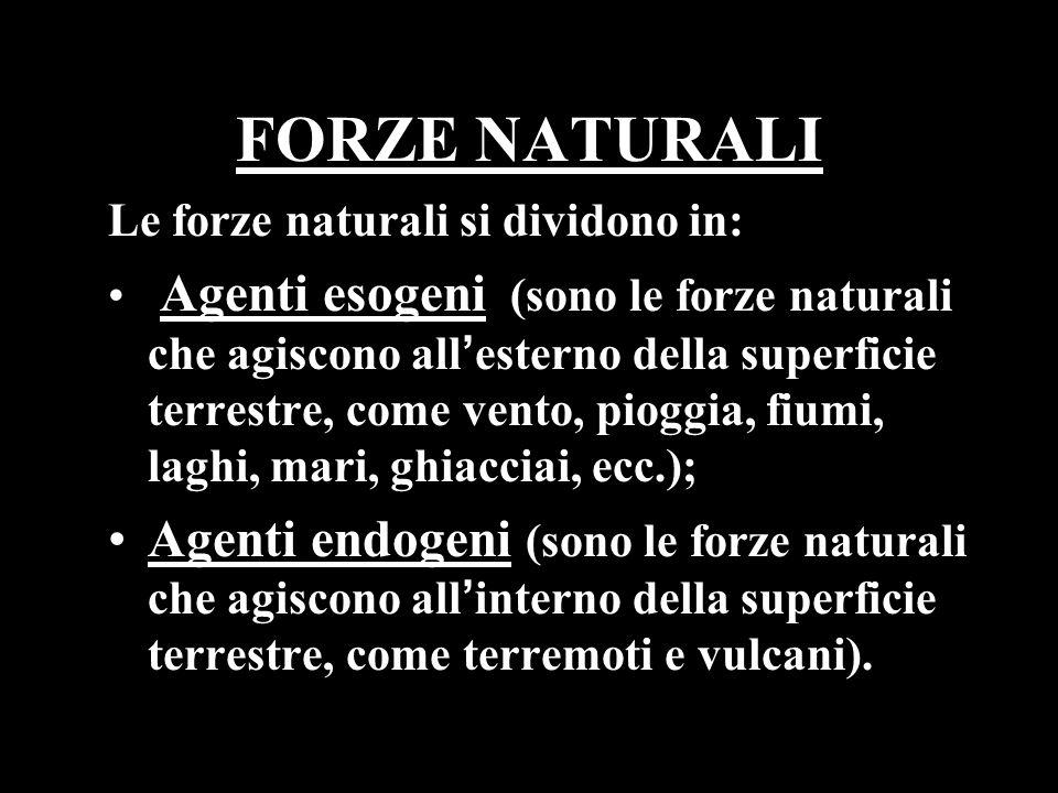 FORZE NATURALI Le forze naturali si dividono in: