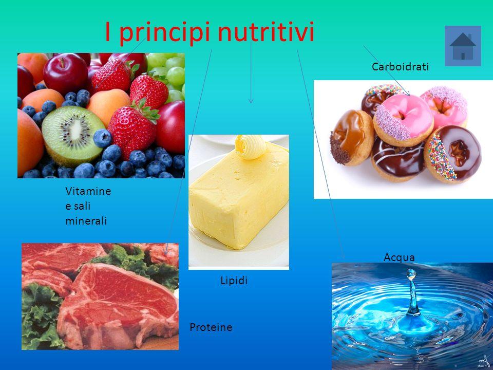 I principi nutritivi Carboidrati Vitamine e sali minerali Acqua Lipidi