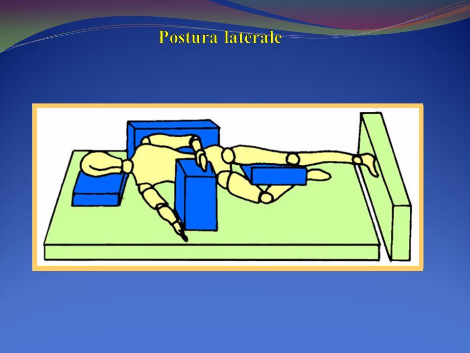 Postura laterale