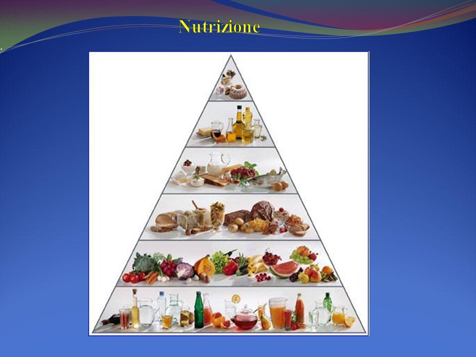 Nutrizione .