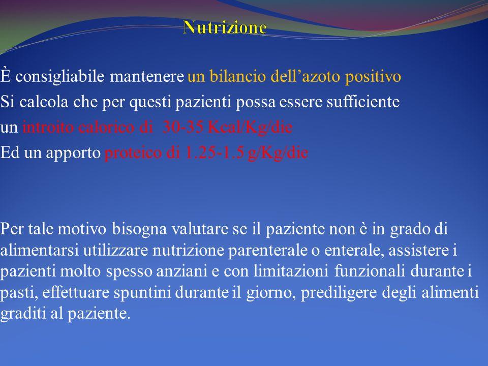 Nutrizione È consigliabile mantenere un bilancio dell'azoto positivo