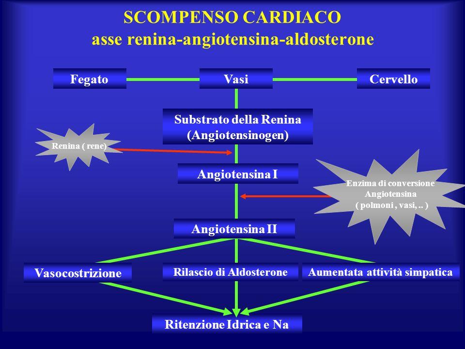 SCOMPENSO CARDIACO asse renina-angiotensina-aldosterone