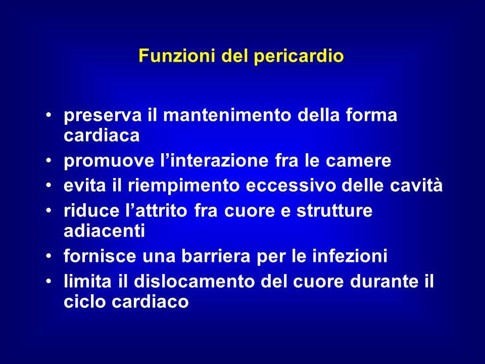 Funzioni del pericardio