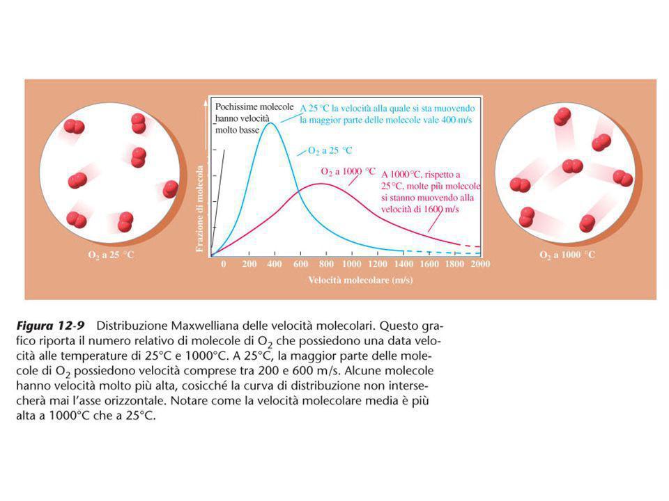 Figura 12-9 Distribuzione Maxwelliana delle velocità molecolari.