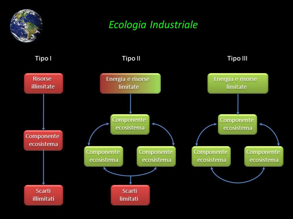 Ecologia Industriale Tipo I Tipo II Tipo III Risorse illimitate