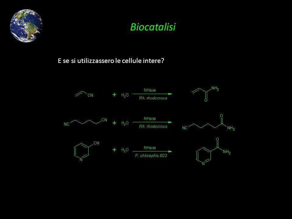 Biocatalisi E se si utilizzassero le cellule intere