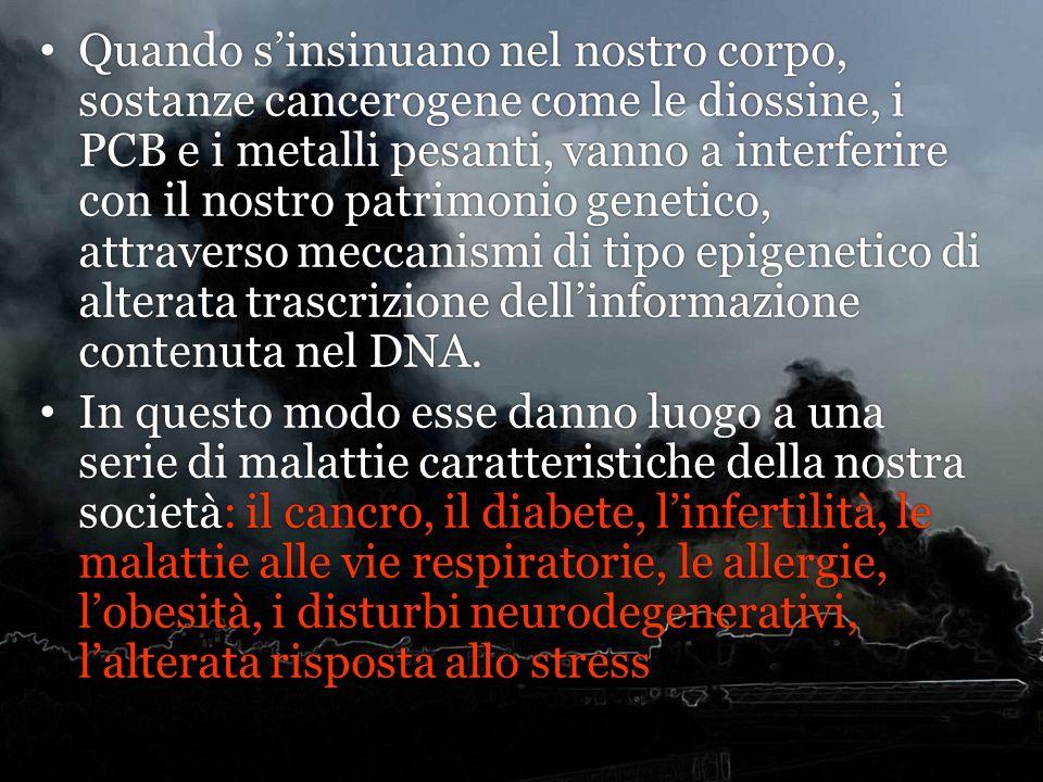 Quando s'insinuano nel nostro corpo, sostanze cancerogene come le diossine, i PCB e i metalli pesanti, vanno a interferire con il nostro patrimonio genetico, attraverso meccanismi di tipo epigenetico di alterata trascrizione dell'informazione contenuta nel DNA.