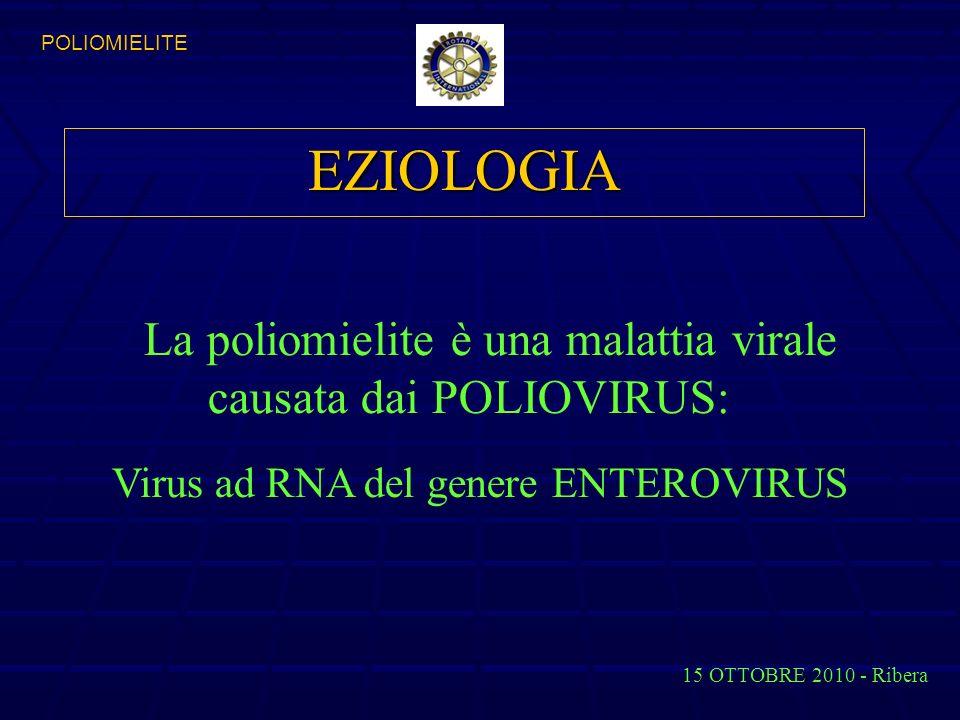 EZIOLOGIA Virus ad RNA del genere ENTEROVIRUS