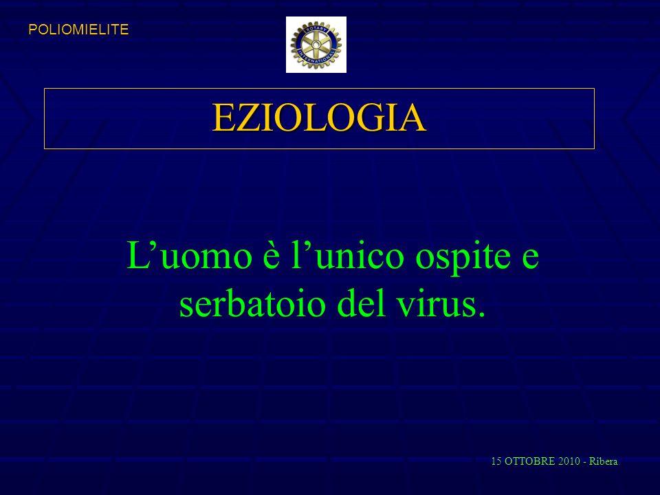 L'uomo è l'unico ospite e serbatoio del virus.