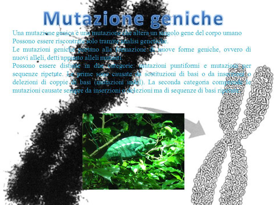 Mutazione genicheUna mutazione genica è una mutazione che altera un singolo gene del corpo umano.