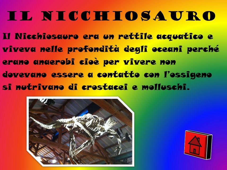 Il nicchiosauro
