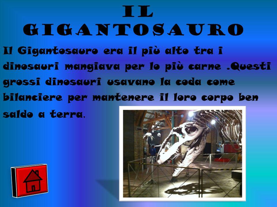 il gigantosauro
