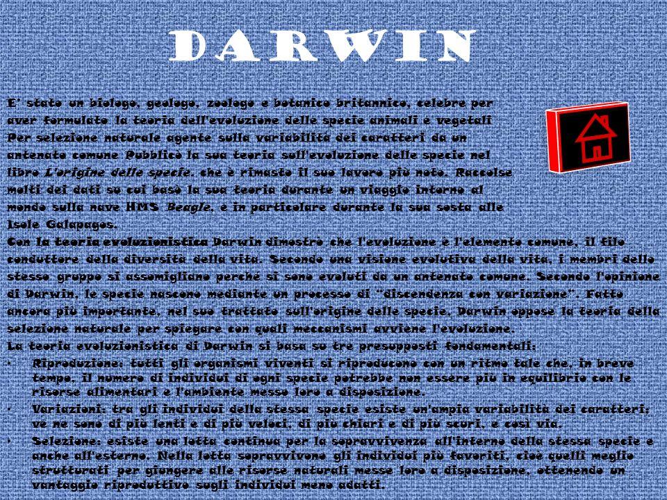 DARWIN E' stato un biologo, geologo, zoologo e botanico britannico, celebre per.