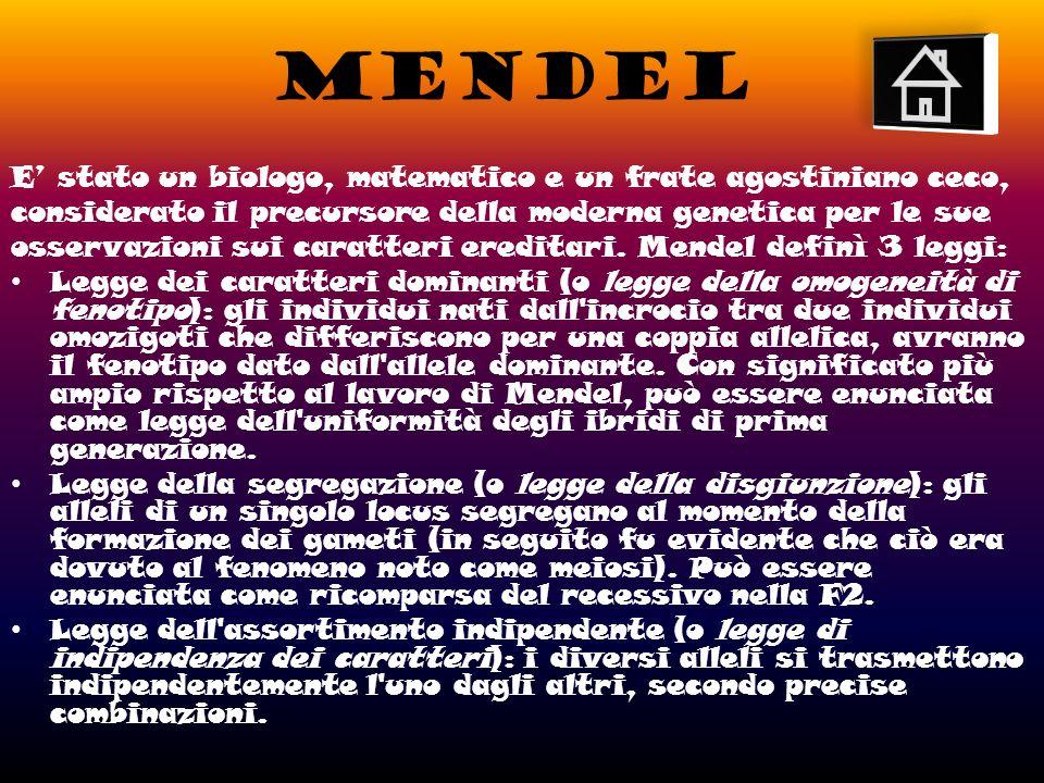 MENDEL E' stato un biologo, matematico e un frate agostiniano ceco,