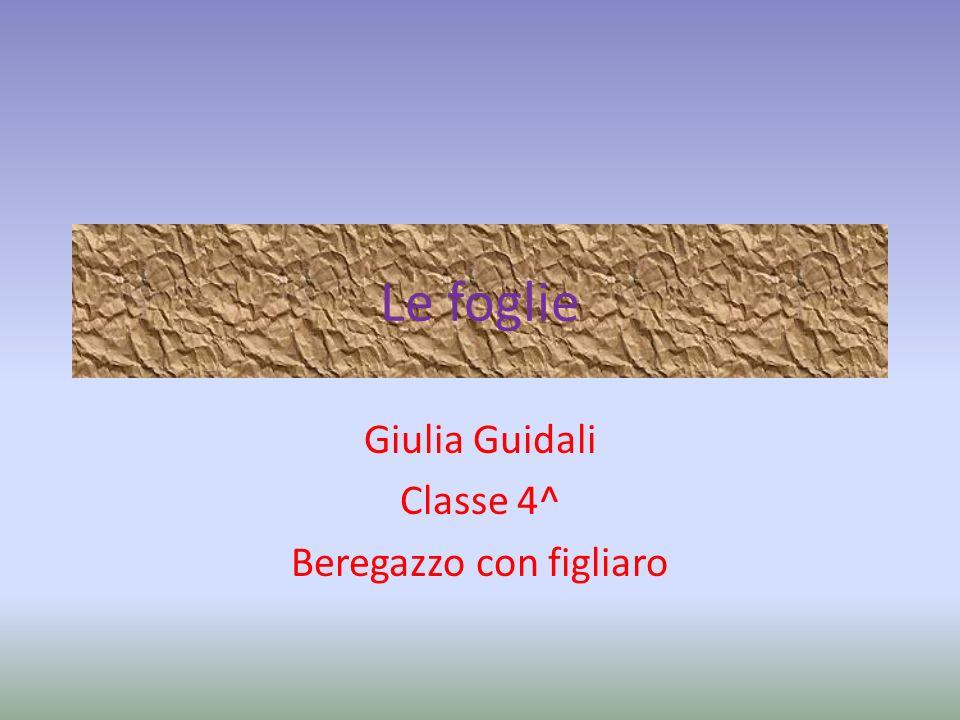 Giulia Guidali Classe 4^ Beregazzo con figliaro