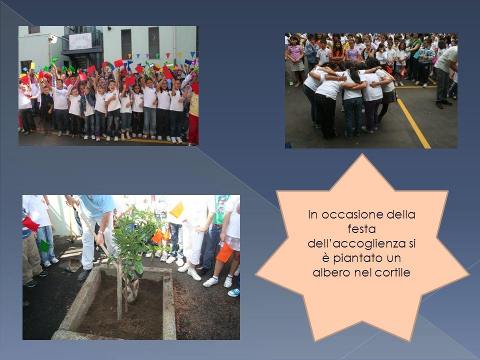 In occasione della festa dell'accoglienza si è piantato un albero nel cortile
