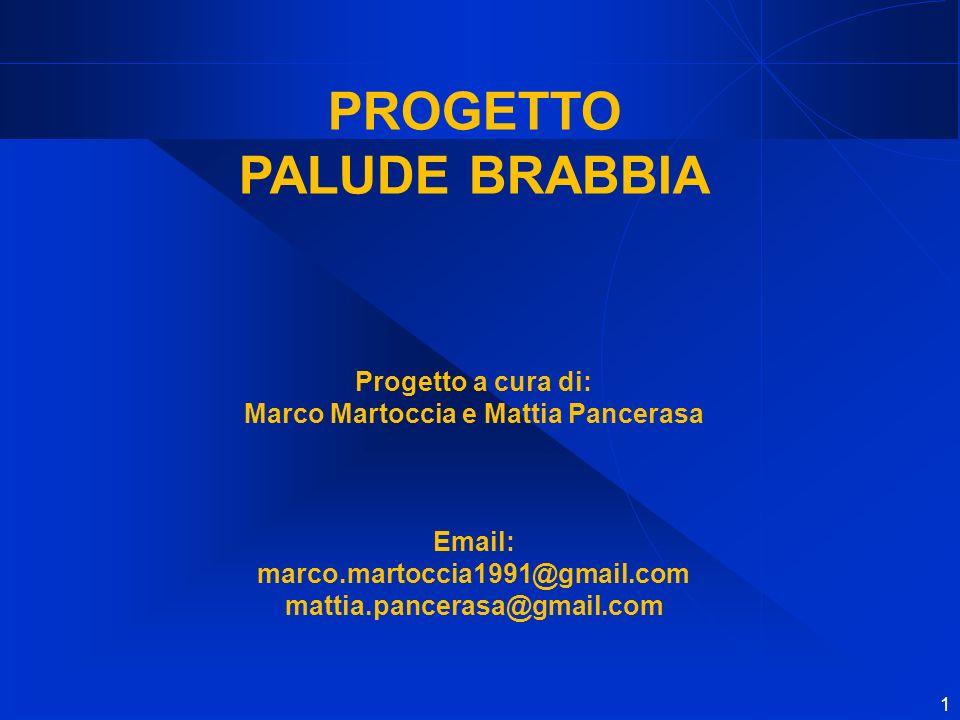 Marco Martoccia e Mattia Pancerasa